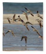 Short-billed Dowitchers Flying Fleece Blanket