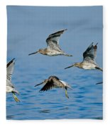 Short-billed Dowitchers In Flight Fleece Blanket