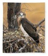 Short-toed Snake Eagle Circaetus Gallicus Fleece Blanket
