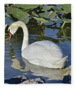 Shy Swan Fleece Blanket