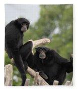 Siamang Monkeys Fleece Blanket