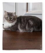 Siberian Forest Cat Fleece Blanket