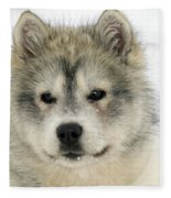 Siberian Husky Puppy Fleece Blanket