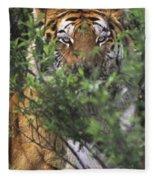 Siberian Tiger In Hiding Wildlife Rescue Fleece Blanket