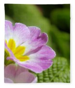 Side View Of A Spring Pansy Fleece Blanket