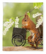 Side View Of Red Squirrel Playing Fleece Blanket
