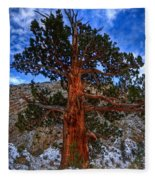 Sierra Pine Fleece Blanket