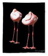 Siesta In Pink Fleece Blanket