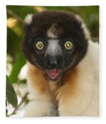 sifaka from Madagascar 8 Fleece Blanket
