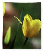 Signs Of Spring II Fleece Blanket