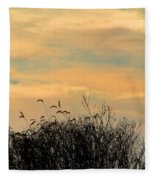 Silhouette Of Grass And Weeds Against The Color Of The Setting Sun Fleece Blanket