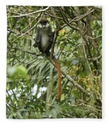 Silly Red-tailed Monkey Fleece Blanket