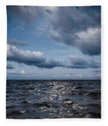 Silver Blue Moon Fleece Blanket