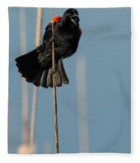 Blackbird Melody Fleece Blanket