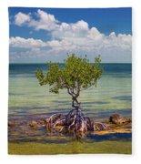 Single Mangrove Tree In The Gulf Fleece Blanket
