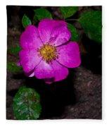 Single Wild Rose Fleece Blanket