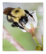 Sipping Nectar Fleece Blanket
