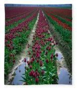 Skagit Valley Tulips Fleece Blanket