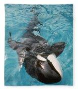 Skana Orca Vancouver Aquarium Pat Hathaway Photo1974 Fleece Blanket