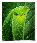 Skunk Cabbage Square Fleece Blanket