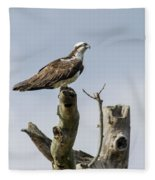 Sky Hunter 2 Fleece Blanket