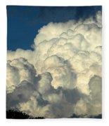 Skyward Sculpture Fleece Blanket