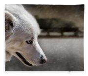 Sled Dog Fleece Blanket