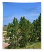 Sleeping Bear Dunes National Lakeshore Fleece Blanket
