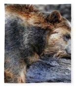 Sleeping Bear Fleece Blanket