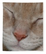 Sleeping Cat Face Closeup Fleece Blanket