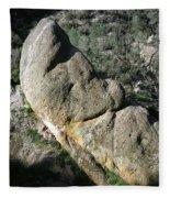 1b6434-sleeping Giant Rock Fleece Blanket