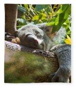 Sleeping Koala Fleece Blanket