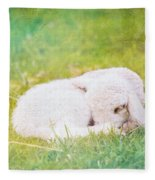 Sleeping Lamb Green Hue Fleece Blanket