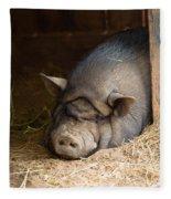 Sleeping Pig Fleece Blanket