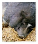 Sleeping Sow Fleece Blanket