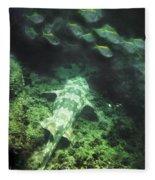 Sleeping Wobbegong And School Of Fish Fleece Blanket