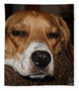 Sleepy Beagle Fleece Blanket