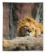 Sleepy Lion Fleece Blanket