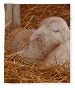 Sleepy Fleece Blanket
