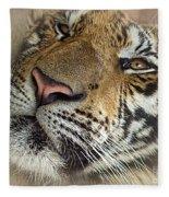 Sleepy Tiger Portrait Fleece Blanket