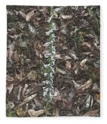 Slender Ladies Tresses Orchids Fleece Blanket