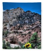 Slide Rock Canyon Fleece Blanket