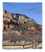 Slide Rock Fleece Blanket