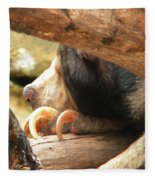 Sloth Bear Fleece Blanket