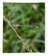 Small Blue Dragonfly Fleece Blanket
