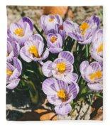 Small Crocus Flower Field Fleece Blanket