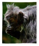 Small Monkey Eating Fleece Blanket