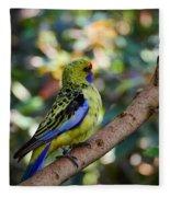 Small Parrot Fleece Blanket