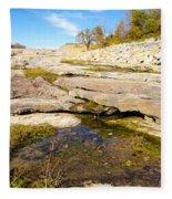 Small Pond Devonian Fossil Gorge Fleece Blanket