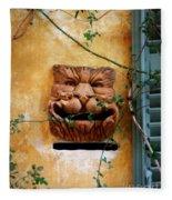 Smiling Cat Mail Box Fleece Blanket
